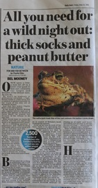 Daily Mail review