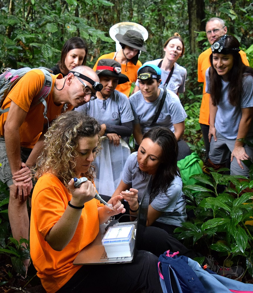 Taxon Expeditions